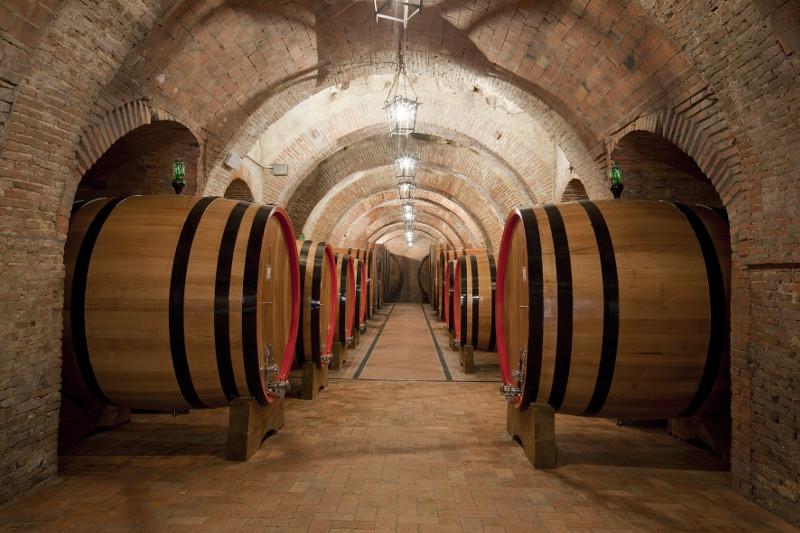 Fattoria della Talosa: la storia mista a dell'ottimo vino