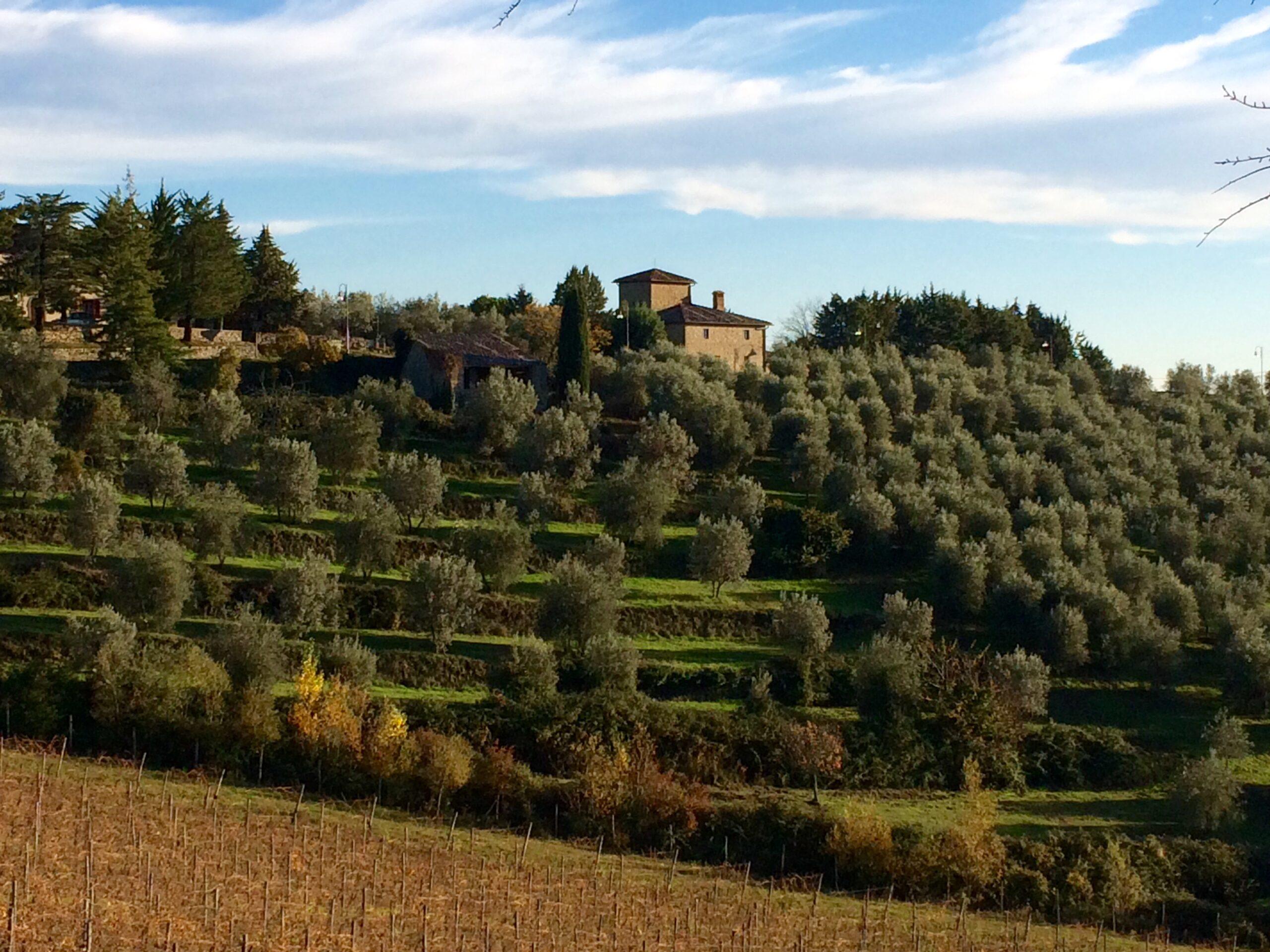 La Toscana a piedi