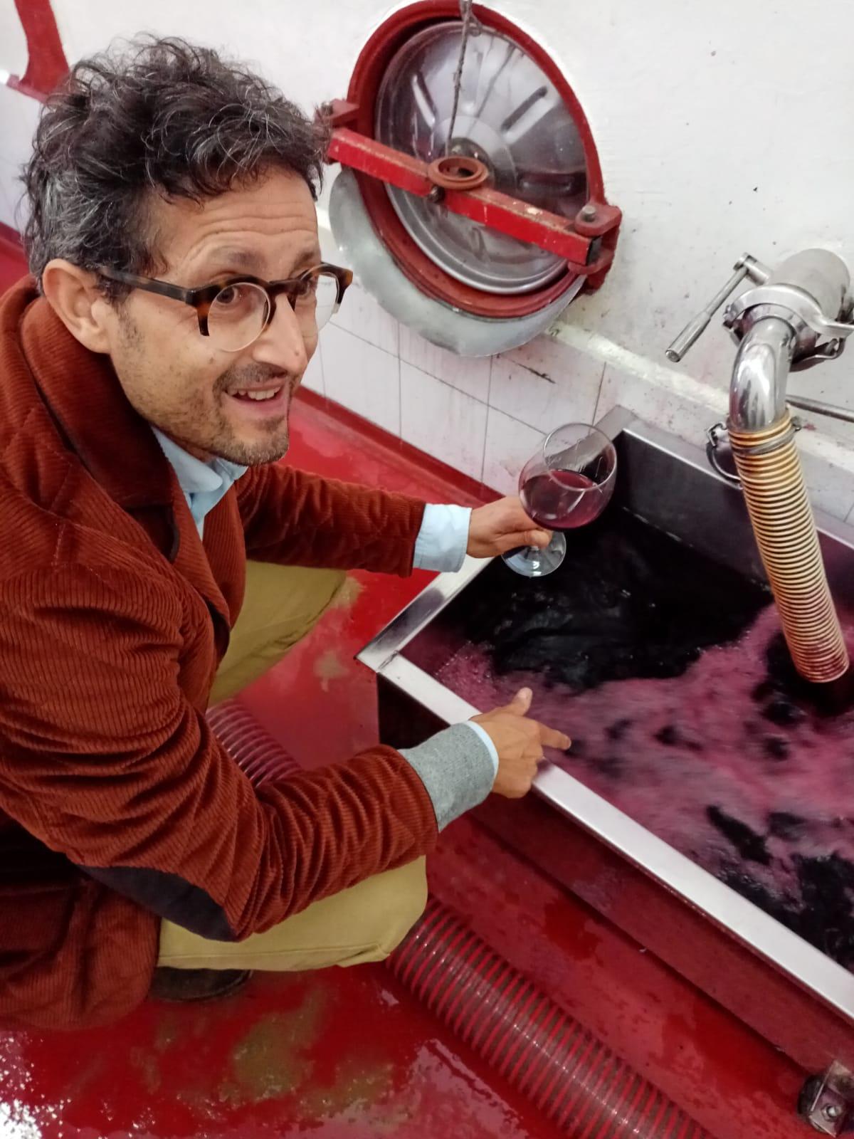 Bicchieri da degustazione vino rosso: tutti i segreti