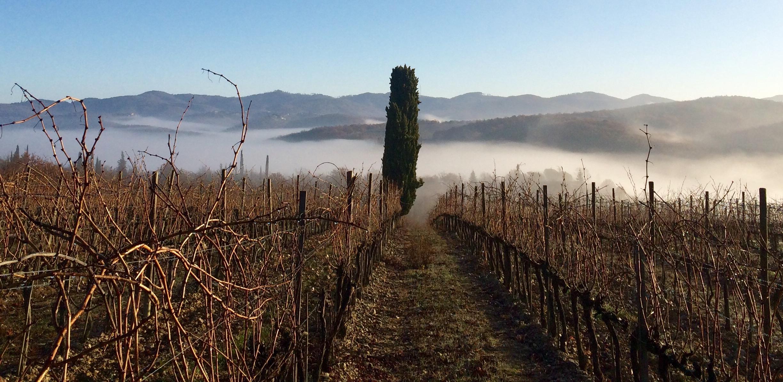 Itinerario 1: Toscana Chianti Classico